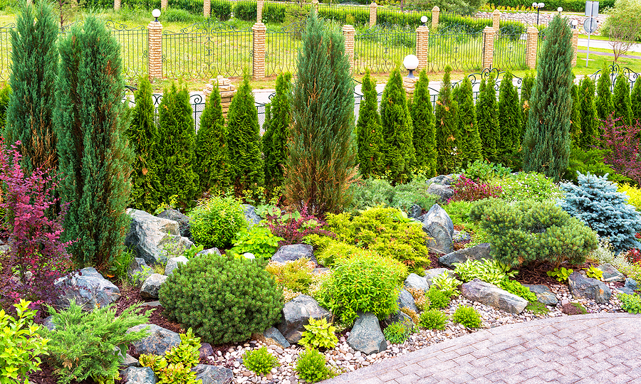 landscape design with plants and flowers at residential house. landscaping panorama of home garden. beautiful view of landscaped garden in backyard. scenery of natural landscaping area in summer.